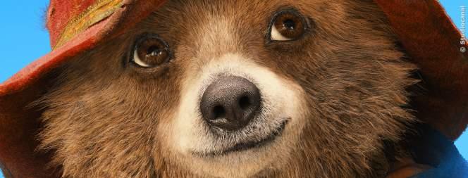 Paddington kommt zurück ins Kino