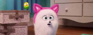 Pets 2: Hund verkleidet sich als Katze - Neuer Trailer