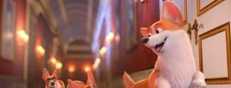 Royal Corgi: Der Hund der Queen kommt ins Kino