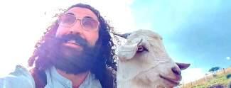 TV: Promis reisen mit Tieren um sie dann zu schlachten