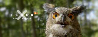 Terra X statt Schule: ZDF bildet Schüler per YouTube