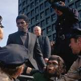 Eroberung vom Planet der Affen - Film 1972