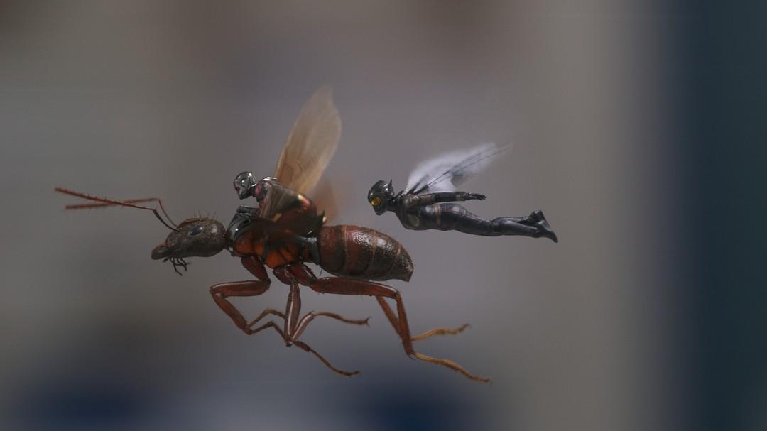 Ant-Man And The Wasp - Bild 5 von 24