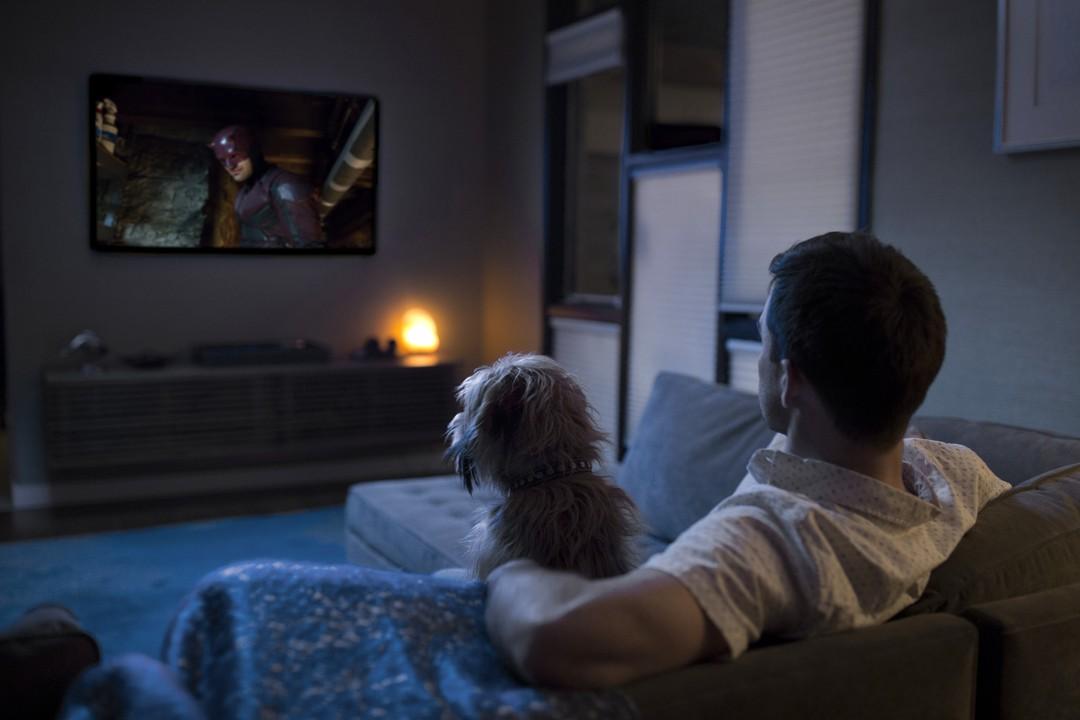 Haustiere sind gute Netflix-Partner - Bild 1 von 7