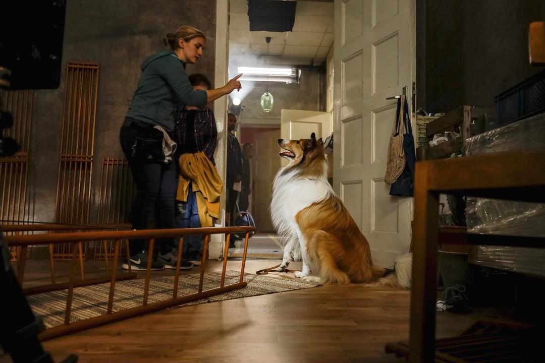Lassie: Eine Abenteurliche Reise Trailer - Bild 1 von 12